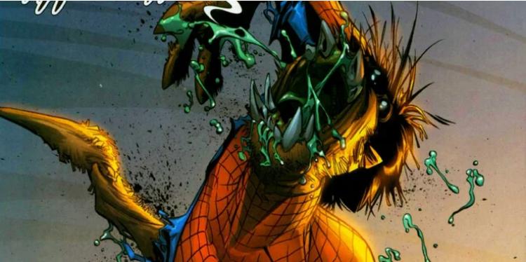 spider-man araignée
